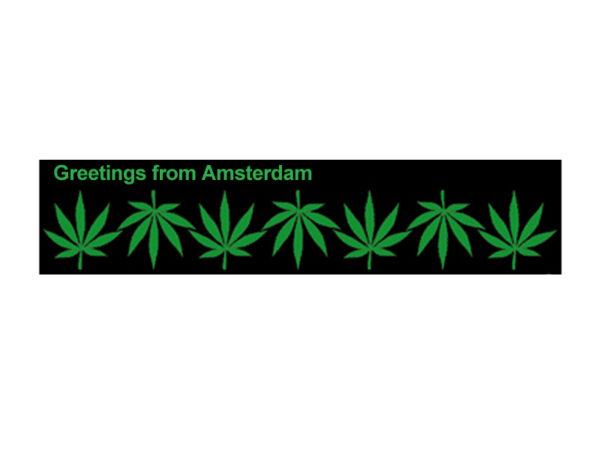 Amsterdam T-Shirt Blanc Manches Courtes Feuilles de Cannabis