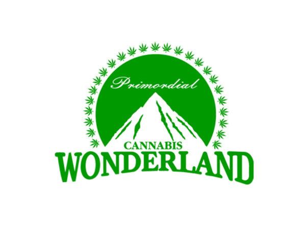 Tee Shirt Blanc Logo Paramount Cannabis Wonderland Manches Courtes