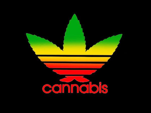 T-Shirt Noir Manches Courtes avec Logo Adidas en Feuille de Cannabis Verte Jaune